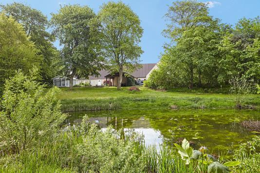 Landejendom på Nederbyen i Horsens - Udsigt til sø