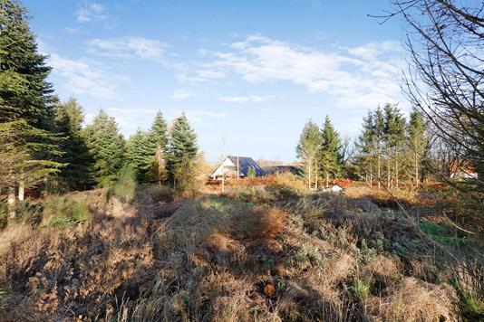 Helårsgrund på Bråskovvej 42A og i Hornsyld - Grund