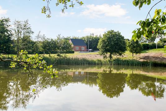 Villa på Birkemosevej i Kolding - Omgivelser