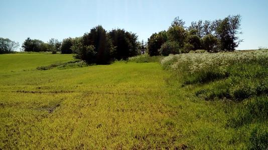 Helårsgrund på Kjeldsmarkvej i Holstebro - Grund