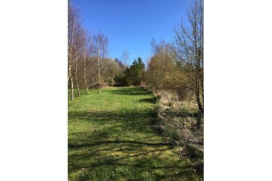 Fritidsgrund på Floravej i Kalundborg - Andet