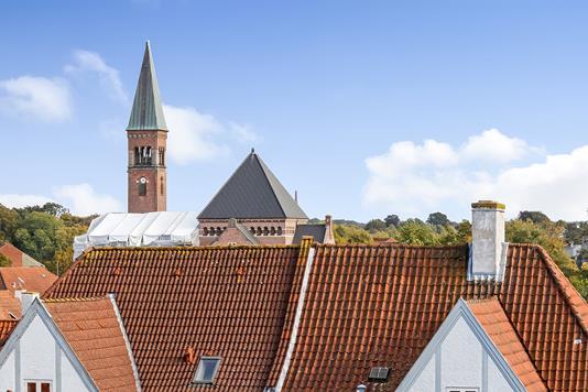 Ejerlejlighed på Vandværksvej i Odense C - Område