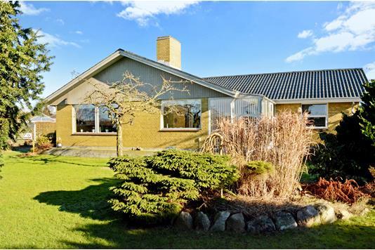Villa på Rørsangervænget i Assens - Have