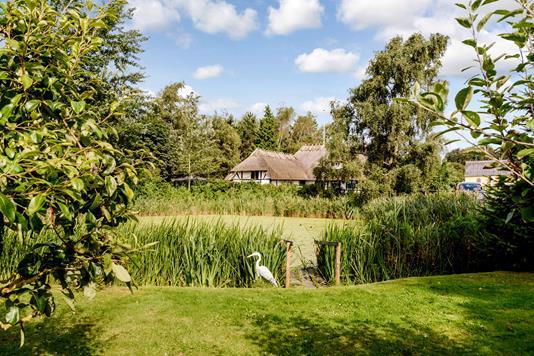 Fritidsbolig på Gamtoftevej i Assens - Have