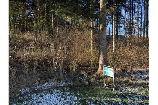 Helårsgrund på Balshavevej i Odder - Byggegrund