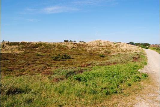 Fritidsgrund på Nordsøvej i Ringkøbing - Grund