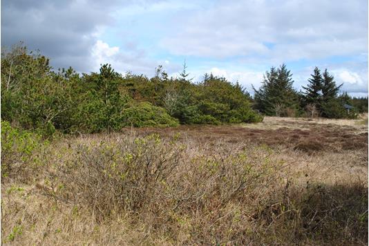 Fritidsgrund på Bilbergsvej i Hvide Sande - grund