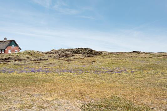 Fritidsgrund på Sønderho Strandvej i Fanø - Grund