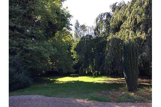 Helårsgrund på Del af Egensevej i Svendborg - Andet
