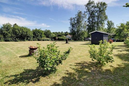 Fritidsgrund på Blåmejsevej i Dronningmølle - Have