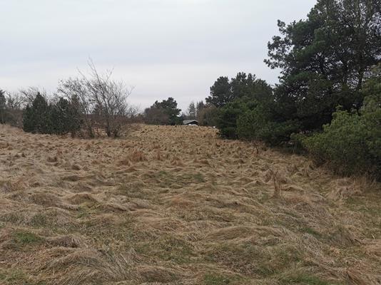 Fritidsgrund på Krageslugten i Hirtshals - Andet