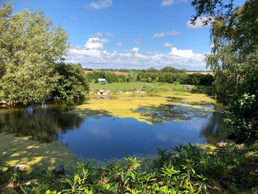 Villa på Skørpingevej i Slagelse - Set fra haven