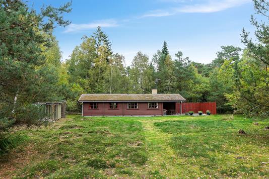 Fritidsbolig på Skovhegnet i Højby - Set fra haven