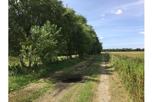 Landejendom på Manna Mosevej i Brønderslev - Set fra vejen