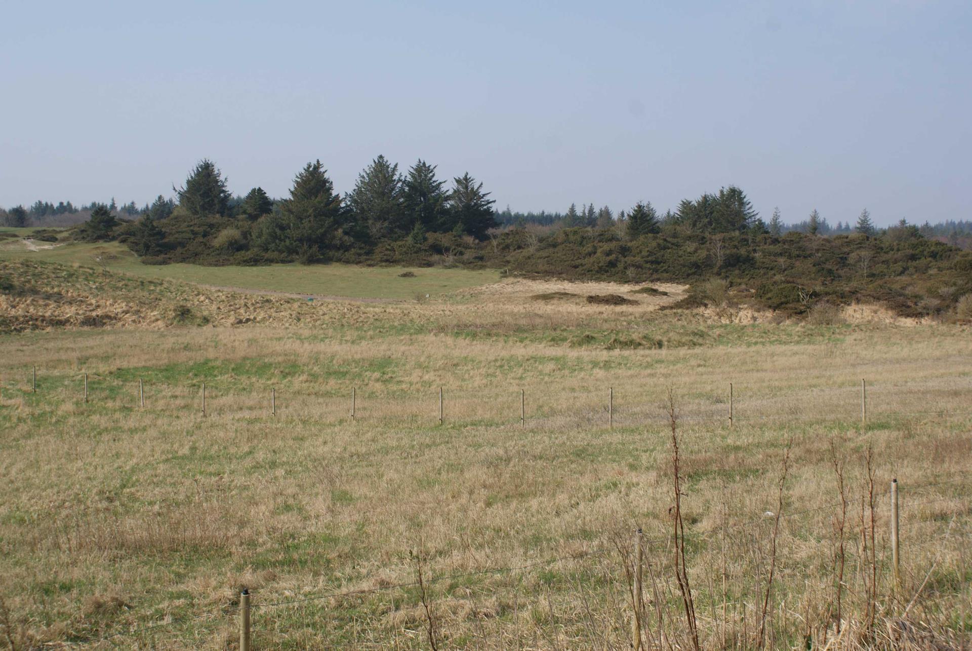 Fritidsgrund på Perikumvej i Fjerritslev - Grund