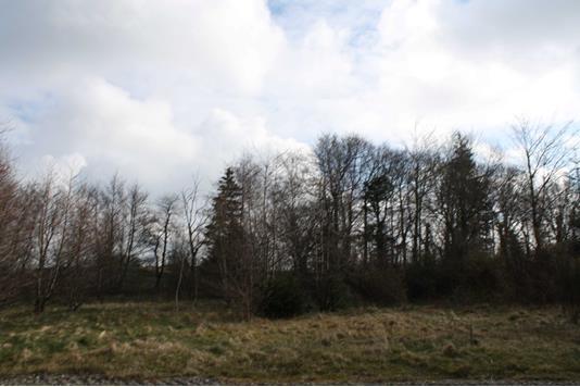 Fritidsgrund på Kollerup Klitvej i Fjerritslev - Grund