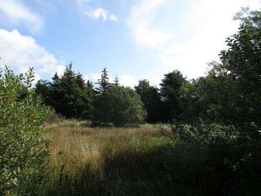 Fritidsgrund på Egevej i Fjerritslev - Andet