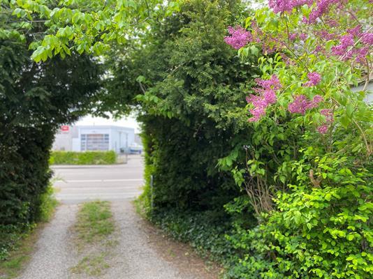 Helårsgrund på Husmandsvej i Taastrup - Andet