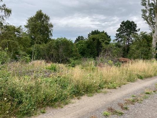 Fritidsgrund på Forchhammervej i Nykøbing Sj - Andet
