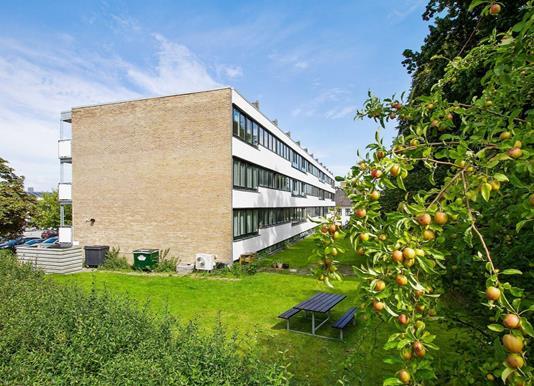 Ejerlejlighed på Gl Hovedgade i Hørsholm - Have