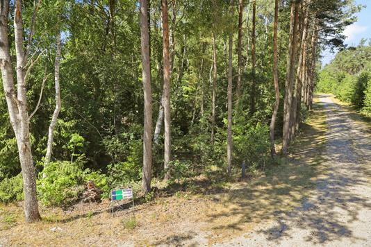Fritidsgrund på Skovkanten i Hals - Terrasse