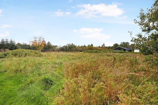 Fritidsgrund på Sønder Havsig i Hals - Grund