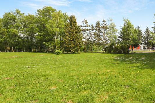 Helårsgrund på Lyngby i Hals - Grund