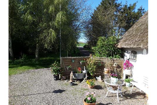 Villa på Korsør Landevej i Korsør - Have