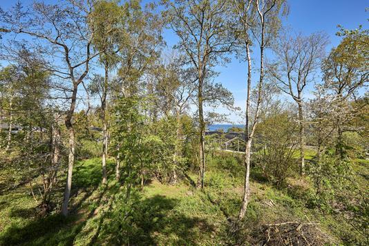 Fritidsgrund på Bregnevej i Gilleleje - Grund