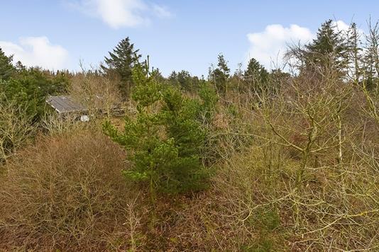 Fritidsgrund på Snerlevej i Ulfborg - Ejendommen