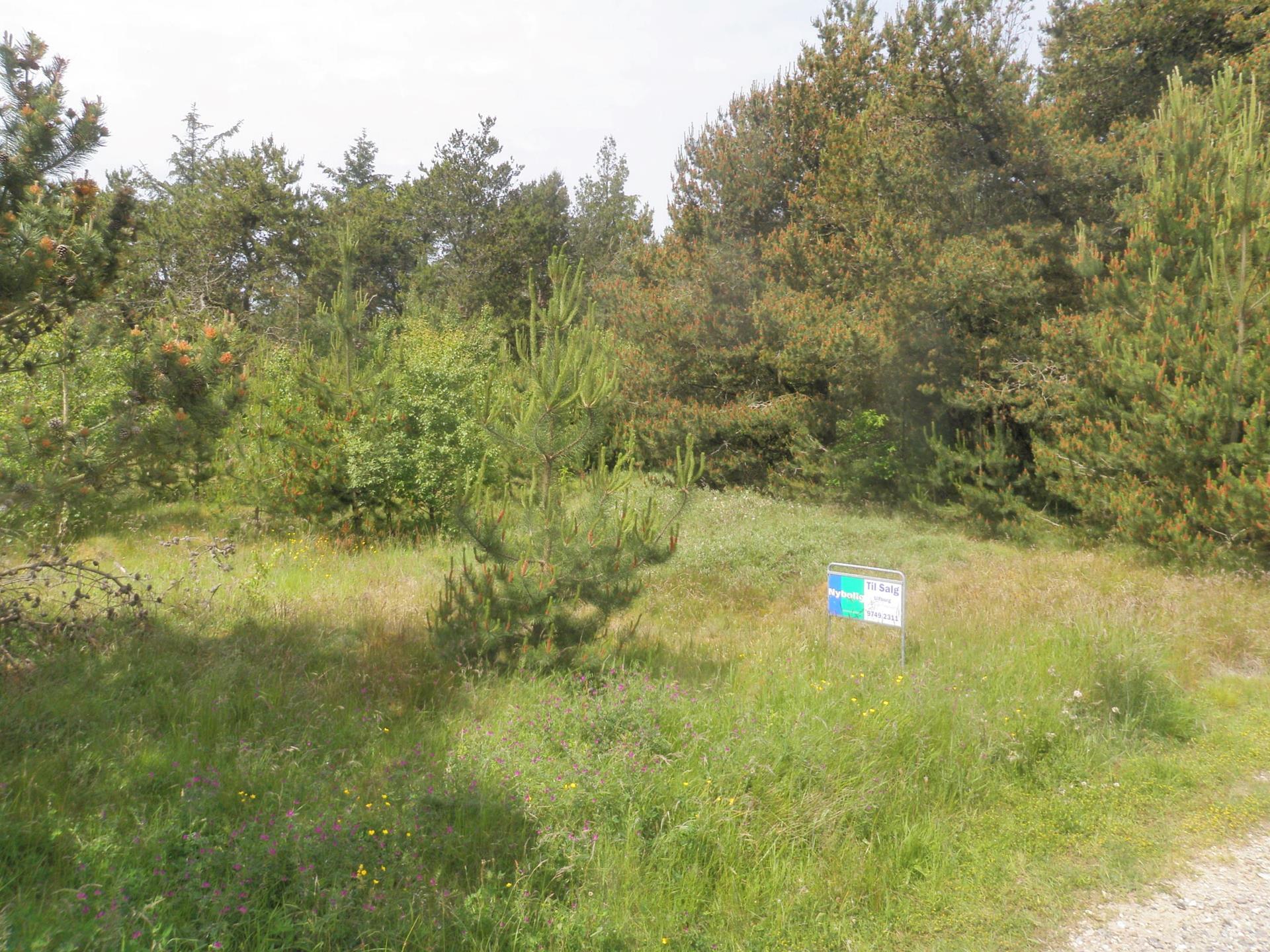Fritidsgrund på Illeborgvej i Ulfborg - Grund