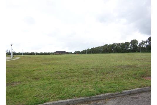 Helårsgrund på Tjørringparken i Herning - Grund