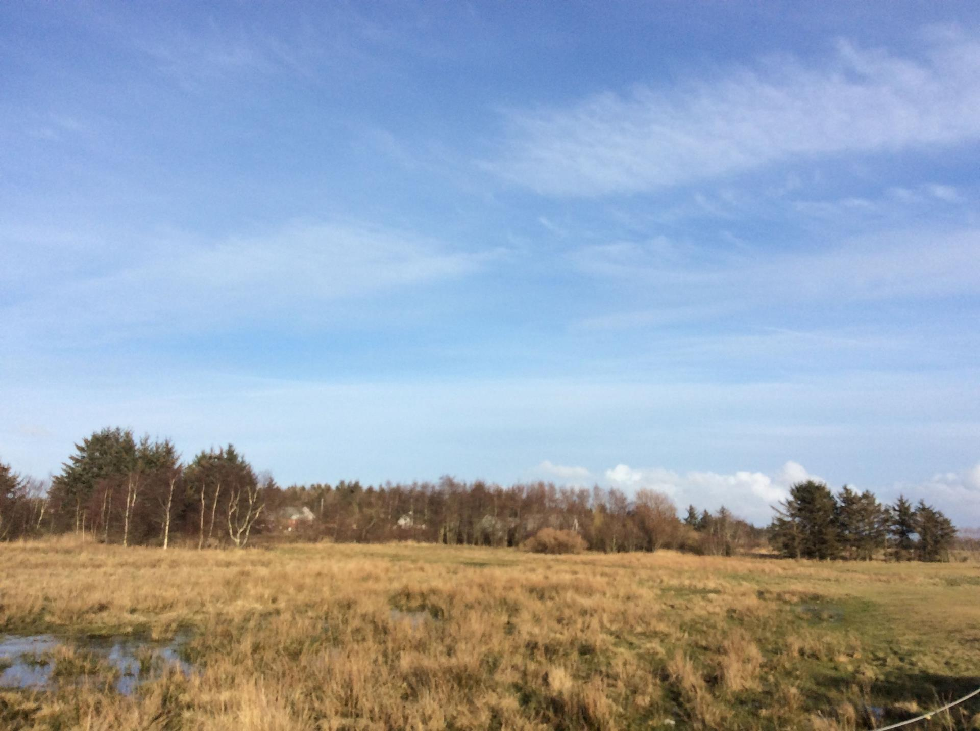 Helårsgrund på Bygholmvej i Vesløs - Grund