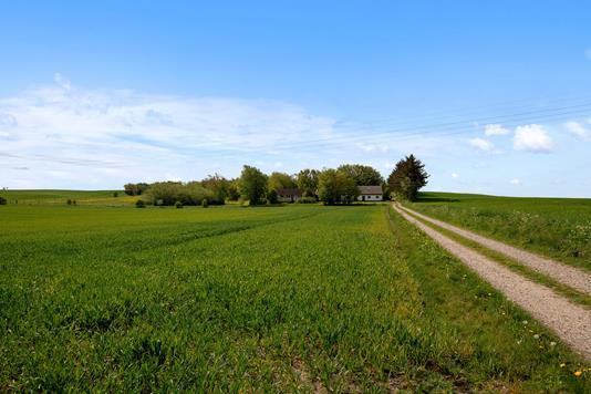 Landejendom på Feldingbjergvej i Stoholm Jyll - Område