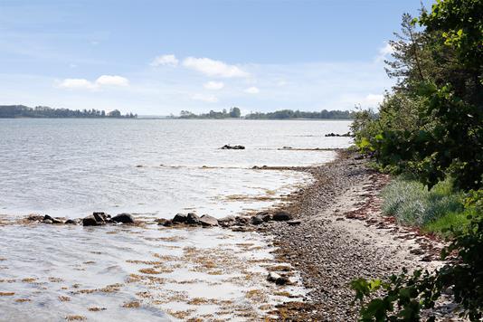 Landejendom på Øster Bisholtvej i Juelsminde - Område