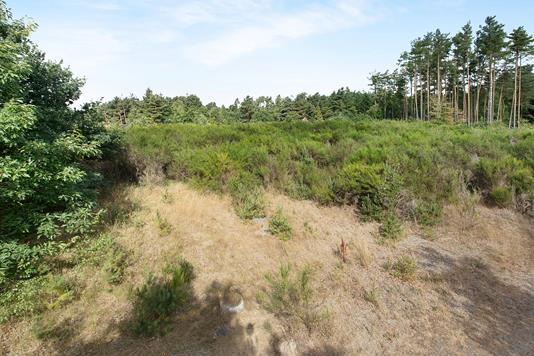 Fritidsgrund på Grævlingevej i Rønde - Grund