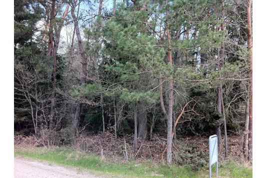 Fritidsgrund på Egernvej i Rønde - Grund