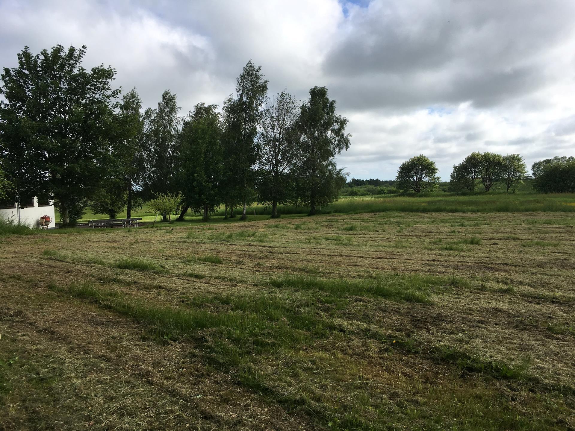 Helårsgrund på Løvvej i Grevinge - Grund