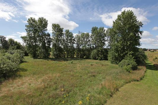 Helårsgrund på Kløvermarken i Stenlille - Grund
