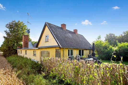 Villa på Kildebrønde Landevej i Greve - Set fra haven