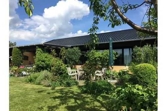 Villa på Platanhaven i Glostrup - Ejendommen