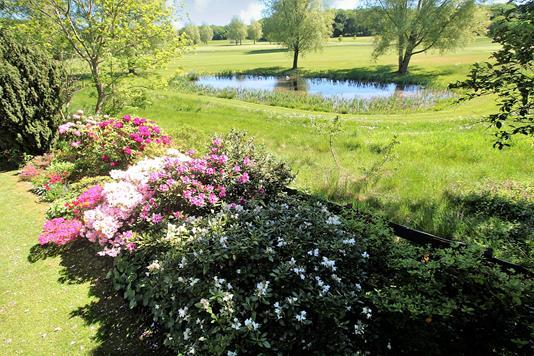 Villa på Poppelvej i Fredensborg - Udsigt