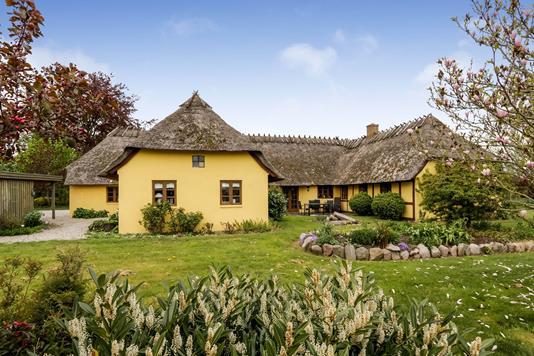Villa på Kirstinebjergvej i Årslev - Have