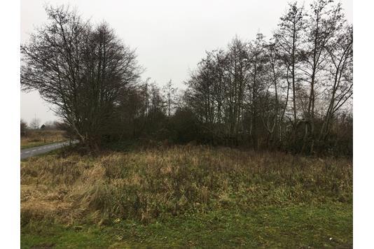 Fritidsgrund på Stampemøllevej i Ribe - Grund