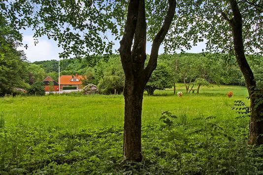 Landejendom på Udbyhøjvej i Randers NØ - Ejendommen