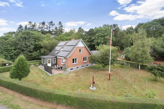 Villa på Tindbækvej i Tjele - Ejendommen