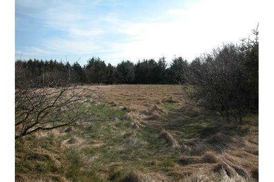Fritidsgrund på Hjejlevej i Hurup Thy - Grund